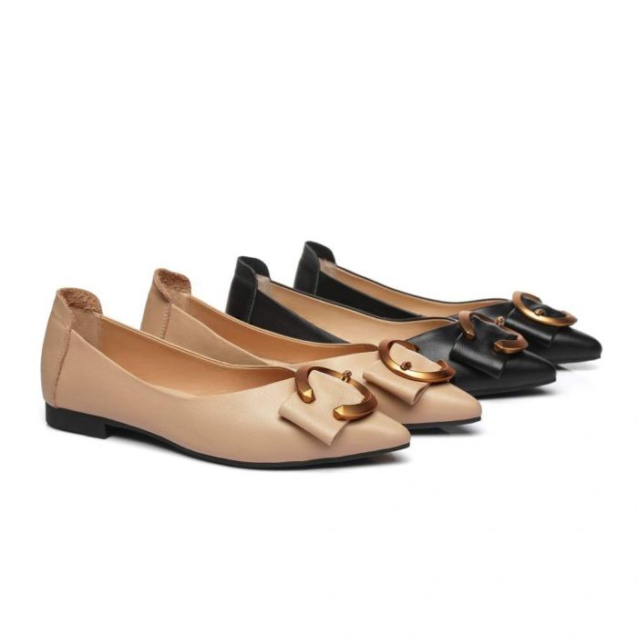 Pari Pointed Toe Ballet Flat with Metal Buckle Décor AS7014